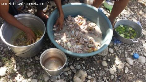 PHOTO: Haiti - 2 kabrit pou nou 8