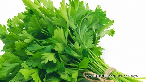 Parsley Health Benefits - Healthy Foods that's good for you