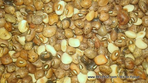 PHOTO: Organic Haitian Black-eyed peas