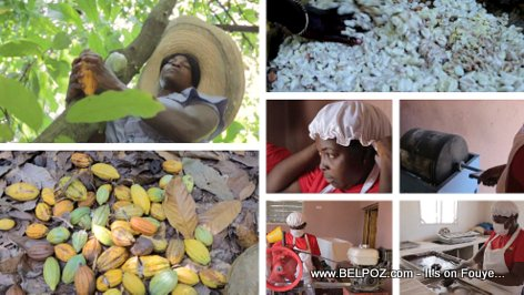 How Haitian women are transforming Cocoa to Chocolate in Haiti