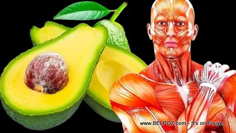 If You Eat an Avocado a Day For a Month, Here's What Will Happen to You (VIDEO)