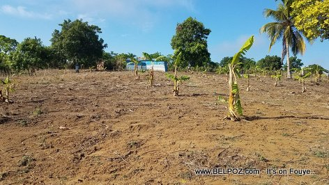Haiti Agriculture : A crop field lays empty as farmers wait for rainfall to plant crops