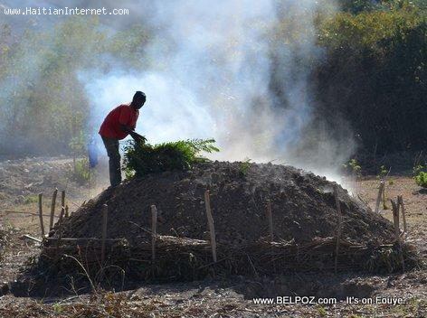 Charbon - Charcoal Making in Haiti