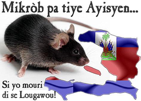 Haitian Proverb - Mikrob pa tiye ayisyen