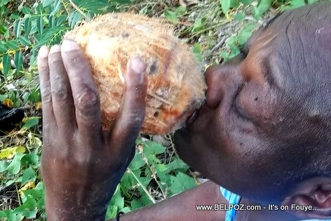 My Haitian cousin drinking fresh coconut water