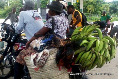 PHOTO: Haiti - Taxi Moto ak yon MAKOUT sou li, Poul, Kabrit, Bannann, Payisan, w-a di se yon cheval...
